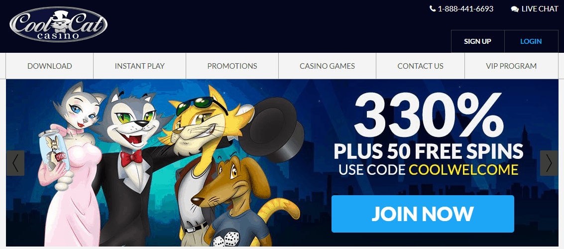 cool cat casino no deposit bonus codes 2019