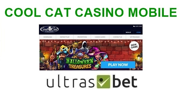 Cool Cat Casino Mobile Welcome page