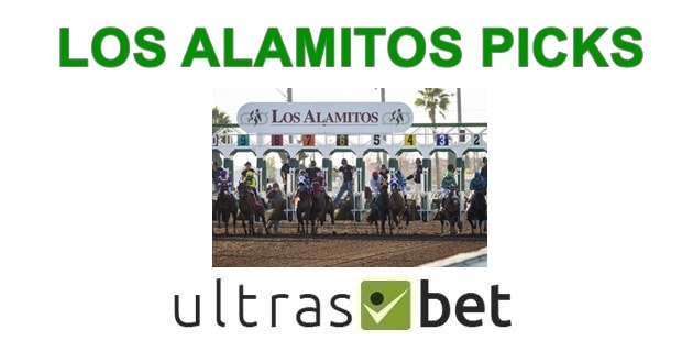 Los Alamitos Picks