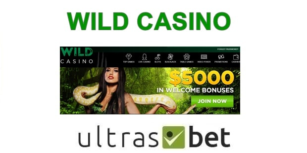 Wild Casino Welcome page